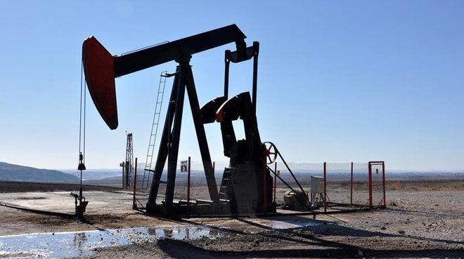 TPAO`ya 21 petrol arama ruhsatı verildi