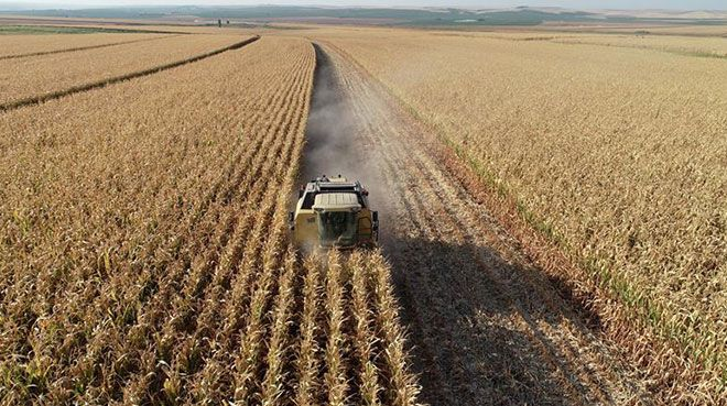 Tarım Girdi Fiyat Endeksi arttı