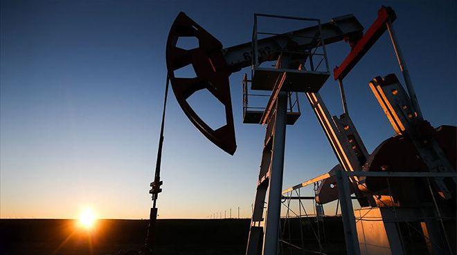 Petrol ithalatı kasımda arttı