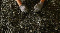 BHP, nikel üretimini artırmayı planlıyor