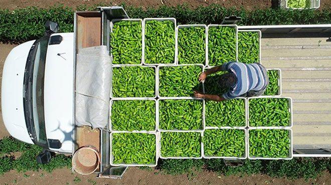 `Çiftçi örgütlenirse gıda fiyatları düşer`