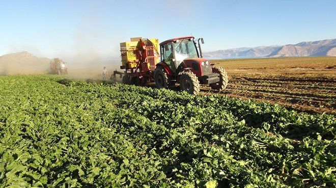 Tarım ÜFE mayısta arttı