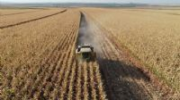 Tarım-ÜFE ağustosta azaldı