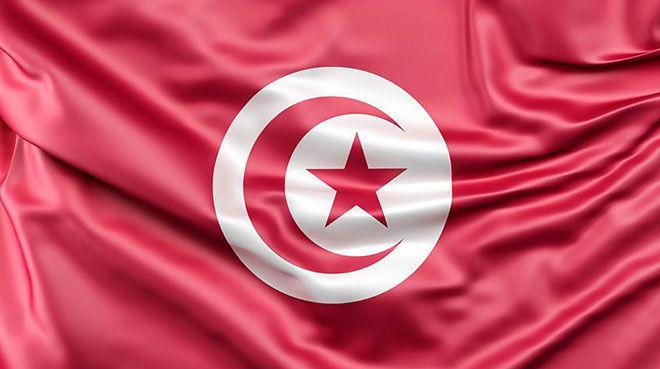 Türkiye-Tunus ekonomik işbirliği İstanbul`da ele alındı