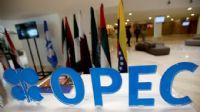`OPEC`in petrol piyasasında önemi tekrar arttı`