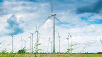 Yabancı rüzgar yatırımcısı Türkiye`den umutlu